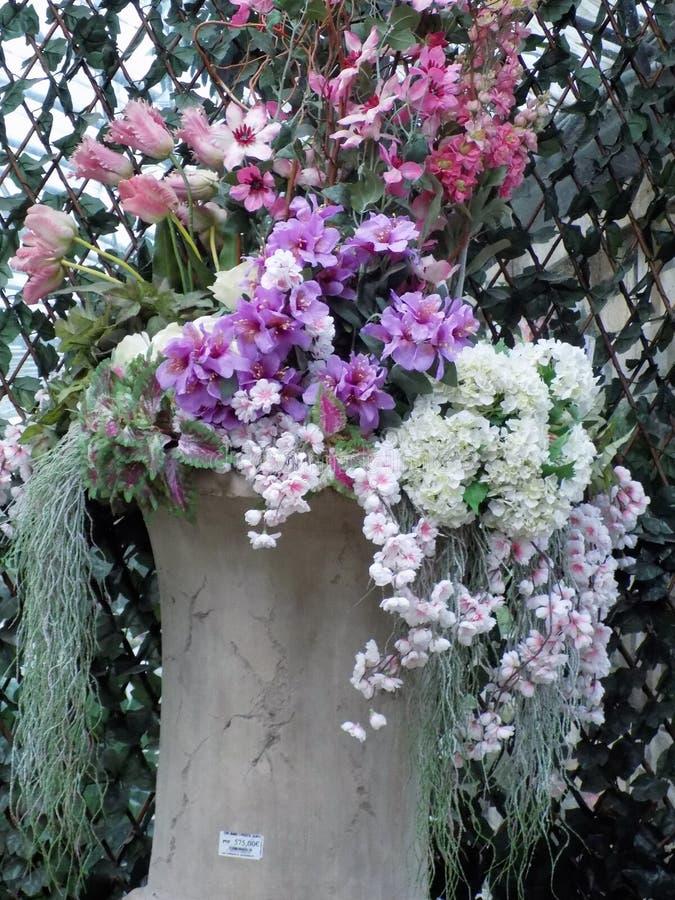 Diverse flowers set of varied colors. Diverse flower set of varied color-Decoration royalty free stock images