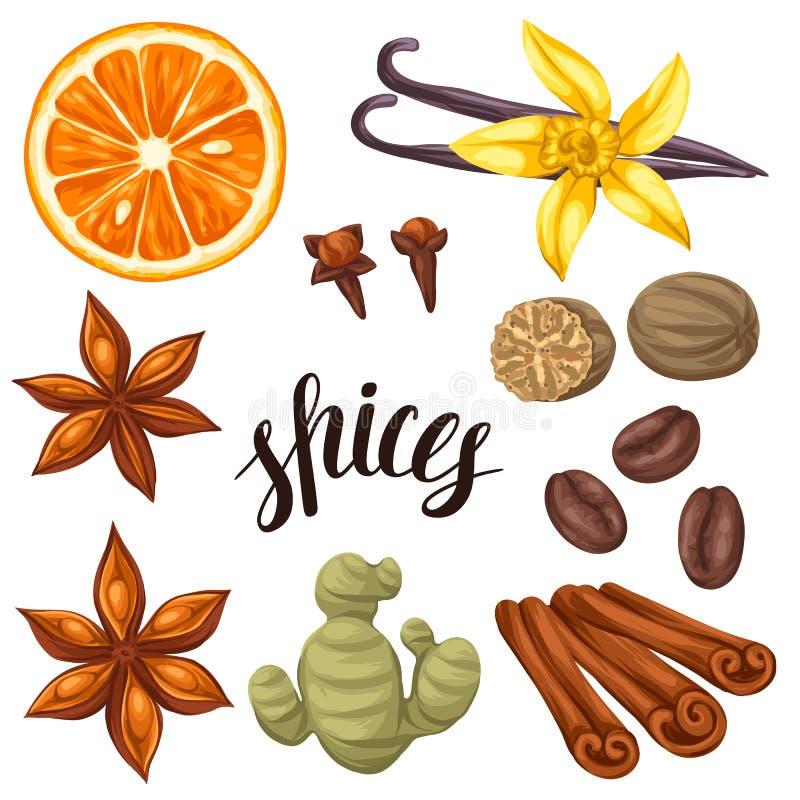 Diverse gestileerde geplaatste kruiden Illustratie van anijsplant, kruidnagels, vanille, gember en kaneel royalty-vrije illustratie
