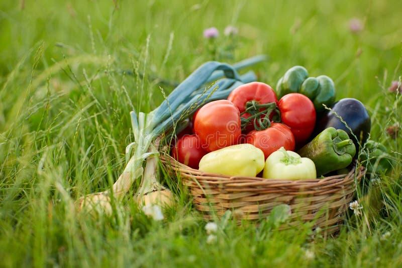 Diverse groenten in een mand stock afbeeldingen