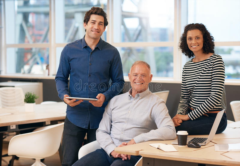 Diverse group of smiling work colleagues in an office royalty free stock images