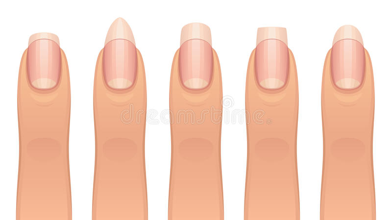 Diverse manicure royalty-vrije illustratie
