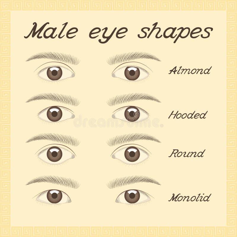 Diverse mannelijke oogvormen stock illustratie