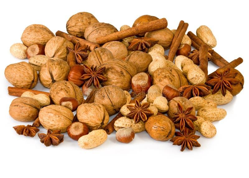 Diverse noten en kruiden royalty-vrije stock afbeeldingen