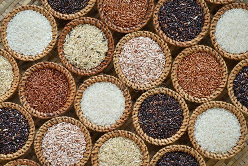 Diverse rijstinzameling stock afbeelding