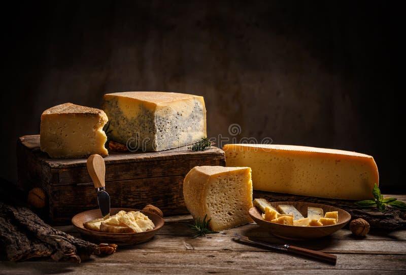 Diverse types van kaas stock afbeelding