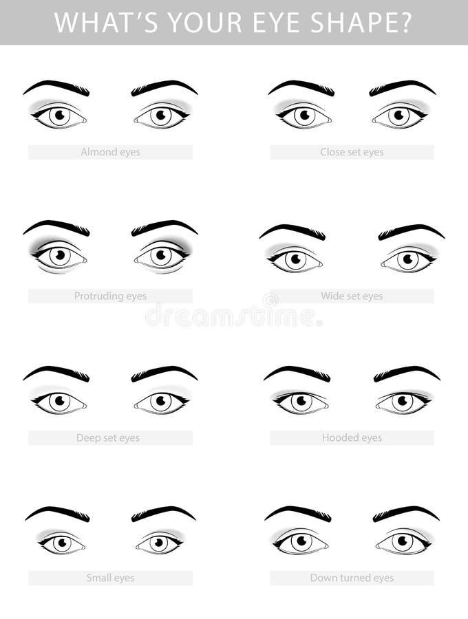Diverse types van vrouwenogen, vectorreeks vector illustratie