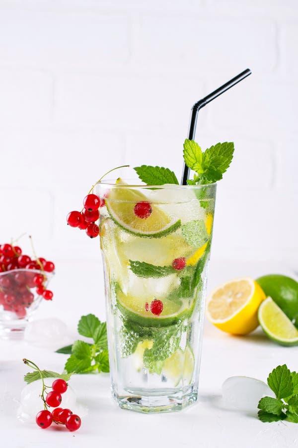 Diverse van bessenlimonade of mojito cocktails, verse bevroren citroenkalk, Rode aalbes goten water, dranken van de zomer de gezo stock foto