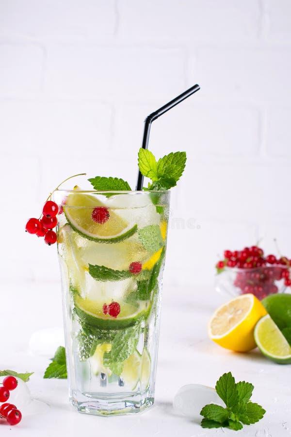 Diverse van bessenlimonade of mojito cocktails, verse bevroren citroenkalk, Rode aalbes goten water, dranken van de zomer de gezo stock afbeelding