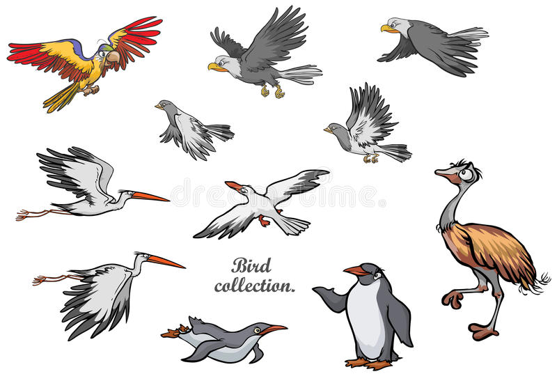 Diverse vogels. stock illustratie