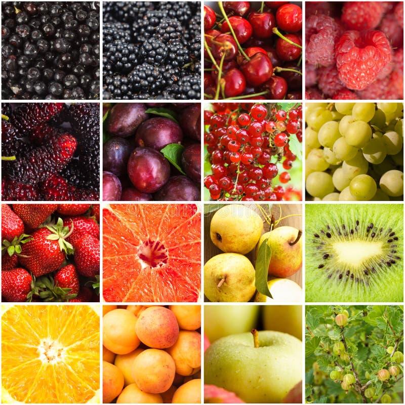 Diverse vruchten bessen royalty-vrije stock afbeeldingen