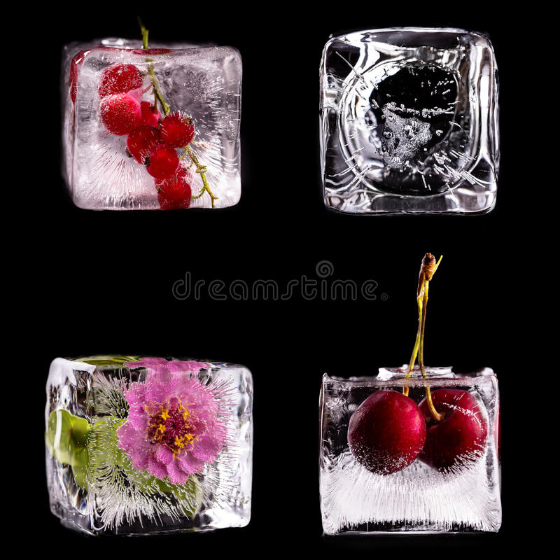 Diverse vruchten en bloem in ijsblokjes royalty-vrije stock fotografie