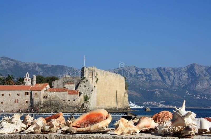 Diverse zeeschelpen op de achtergrond van de oude vesting royalty-vrije stock fotografie