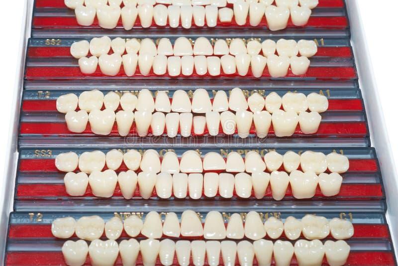 Diverses dents en céramique images stock
