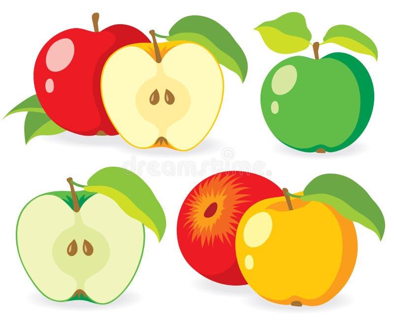 Diverses pommes fraîches illustration stock