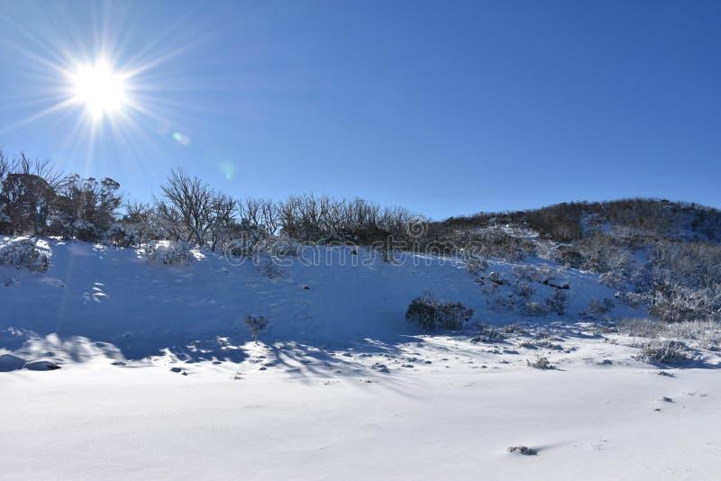 Diversión blanca fría brillante nórdica de la montaña del cielo azul del esquí del invierno del sol de la nieve foto de archivo libre de regalías
