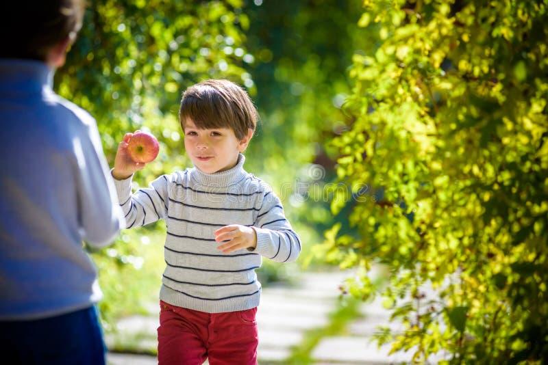 Diversión de la familia durante tiempo de cosecha en una granja Niños que juegan en jardín del otoño imagenes de archivo