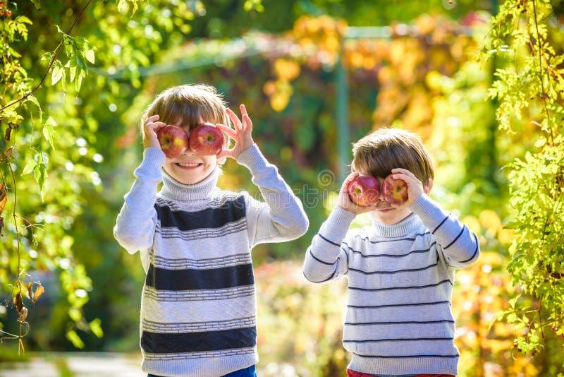 Diversión de la familia durante tiempo de cosecha en una granja Niños que juegan en jardín del otoño fotografía de archivo libre de regalías