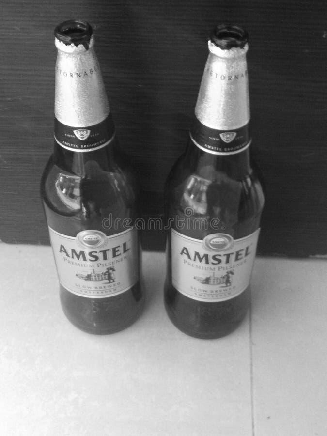 Diversión de la diversión de la fiesta del cerveza de la noche foto de archivo libre de regalías