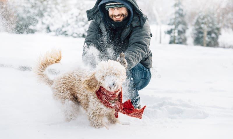 Diversión de la lucha de la bola de nieve con el animal doméstico y su dueño en la nieve invierno ho foto de archivo libre de regalías