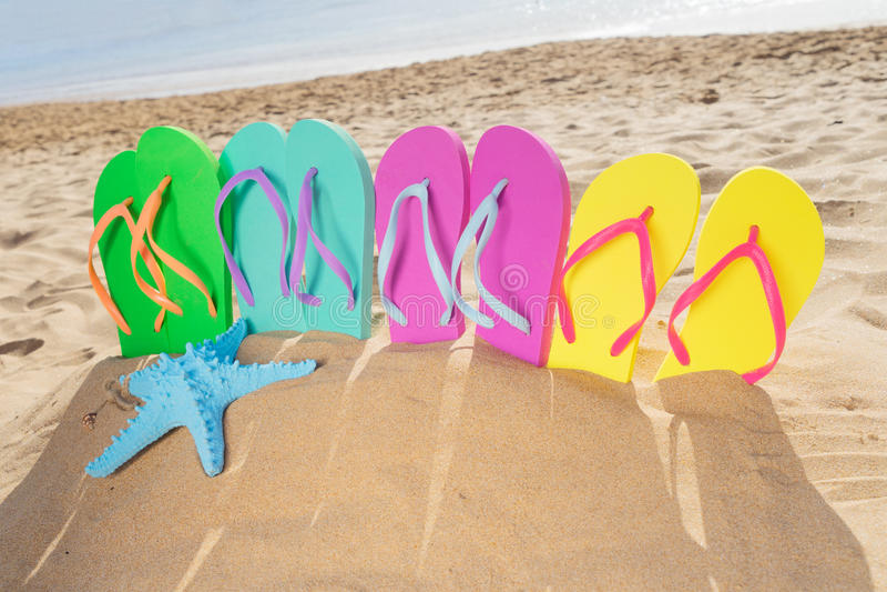 Diversión de la playa del verano foto de archivo