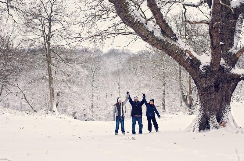 Diversión del invierno de la familia fotografía de archivo