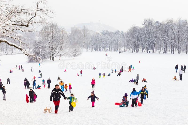 Diversión del invierno, nieve, familia sledding en invierno fotografía de archivo