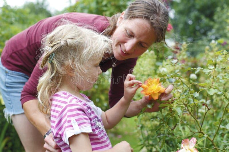 Download Diversión del jardín foto de archivo. Imagen de hija - 42445400
