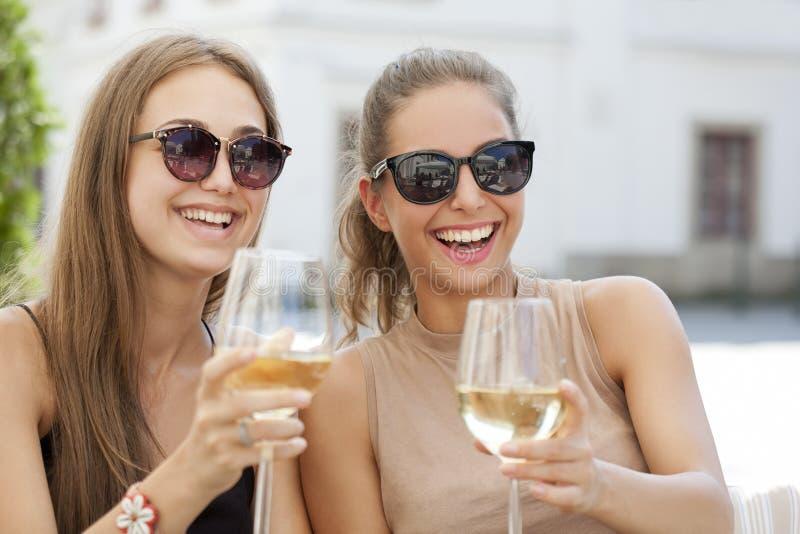 Diversión del vino del verano imagenes de archivo