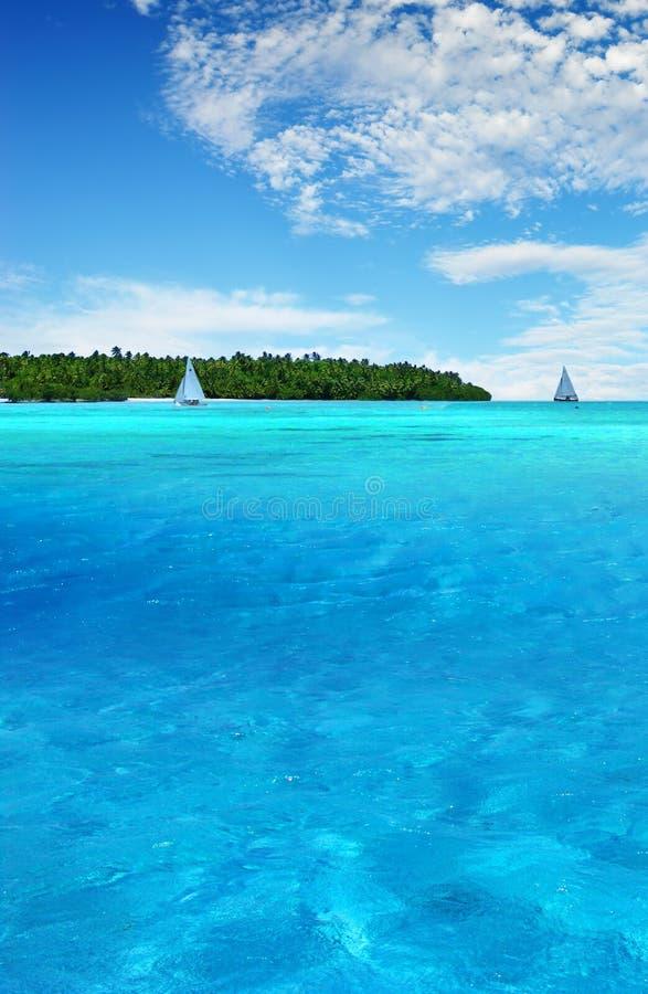 Diversión tropical fotos de archivo