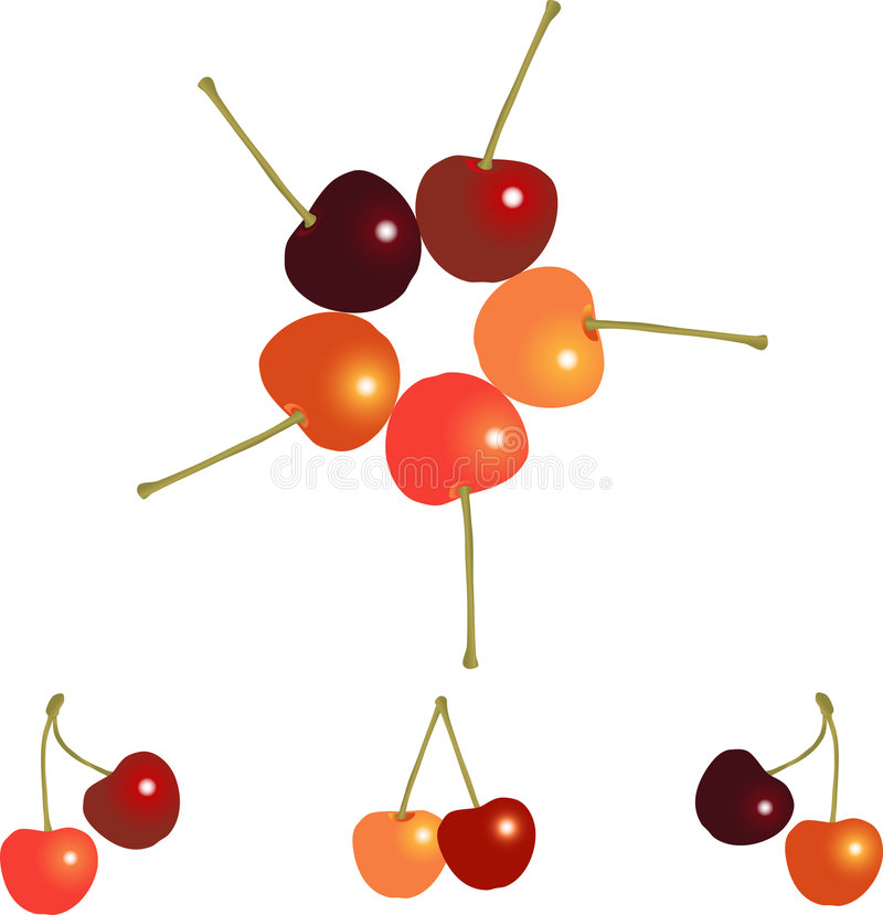 Diversity. Cherries of different colors in groups royalty free illustration