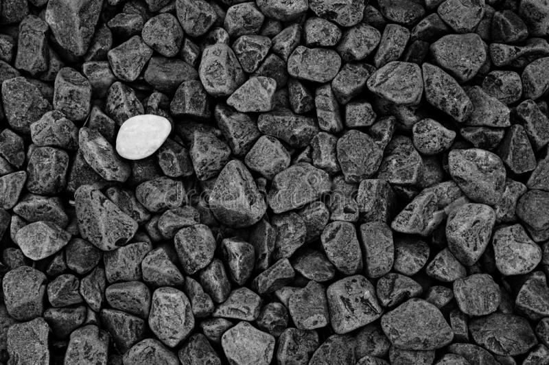 Diversity concept: lone white stone among gray black stones. Stone texture and background royalty free stock images