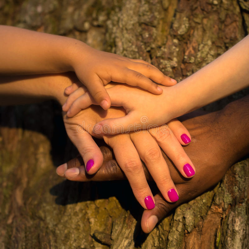 Diversity family concept. Four hands together. Diversity family concept. Four hands of the mixed race family together on the tree bark stock images