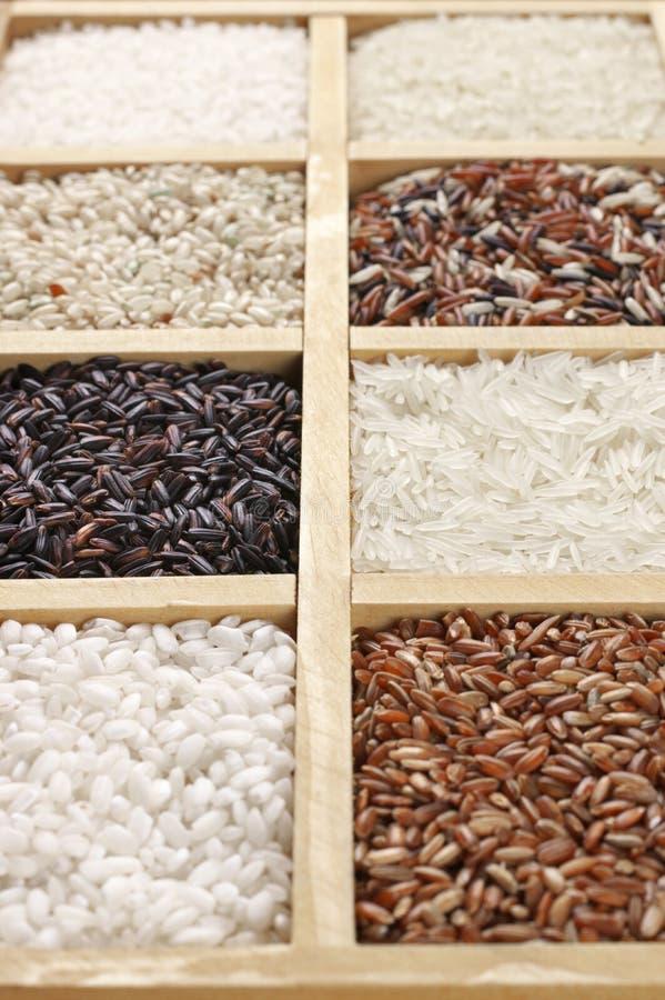 Diverso arroz en caja fotografía de archivo