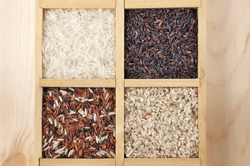 Diverso arroz en caja imagen de archivo