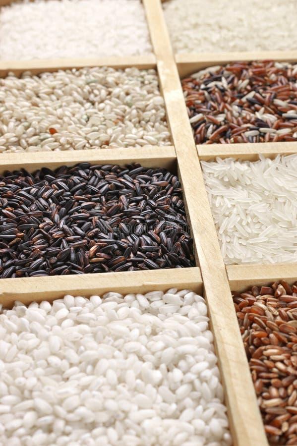 Diverso arroz en caja imágenes de archivo libres de regalías