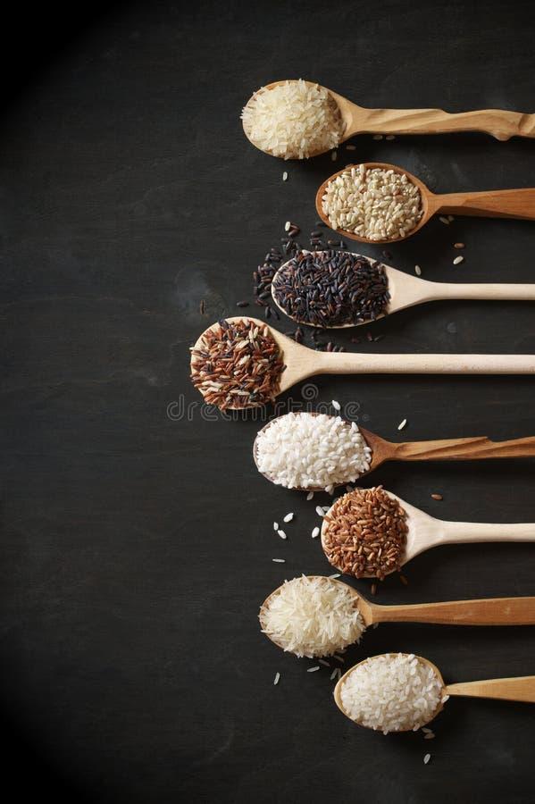 Diverso arroz en cucharas imagen de archivo
