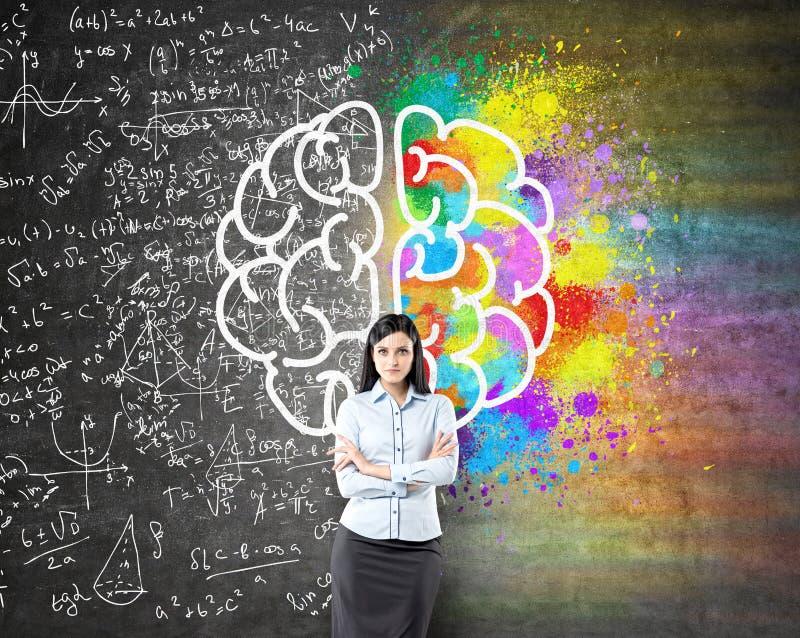 Diverso bosquejo de los lados de los cerebros libre illustration