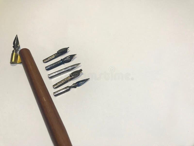 Diverso sistema de la semilla de la caligrafía imagen de archivo