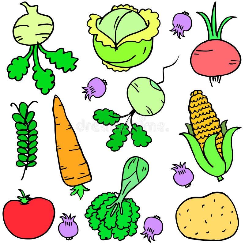 Diverso sistema vegetal de garabatos ilustración del vector