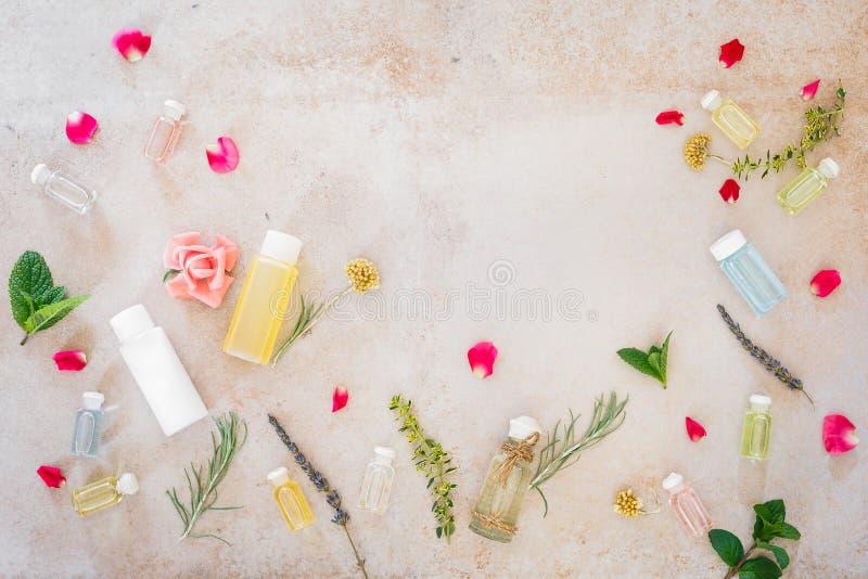 Diversos aceites del skincare, hierbas medicinales frescas y flores imagen de archivo