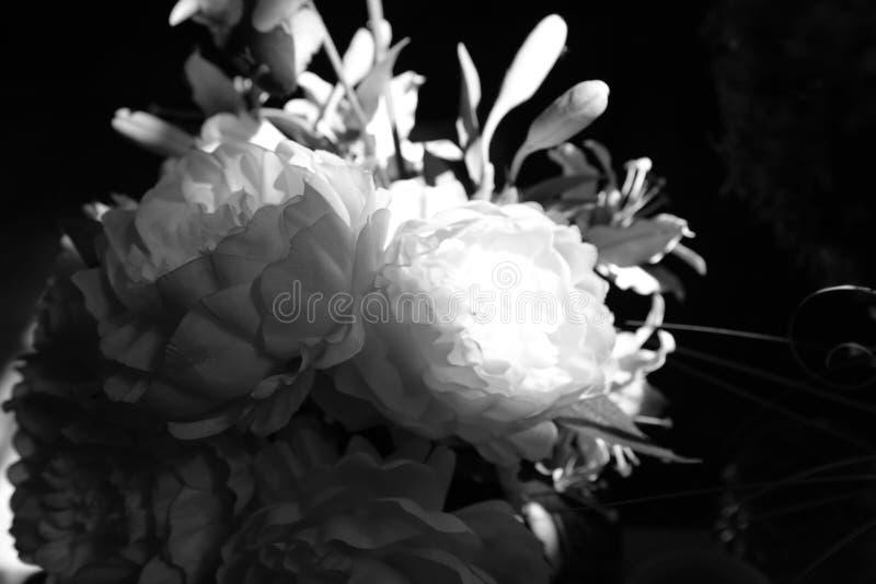 Diversos medios de la flor que salieron imagen de archivo libre de regalías