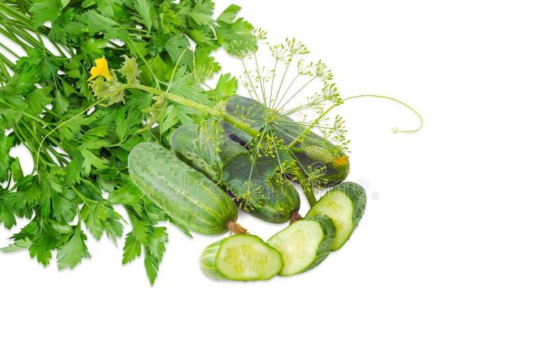 Diversos pepinos com haste, salsa e inflorescência do aneto fotografia de stock royalty free