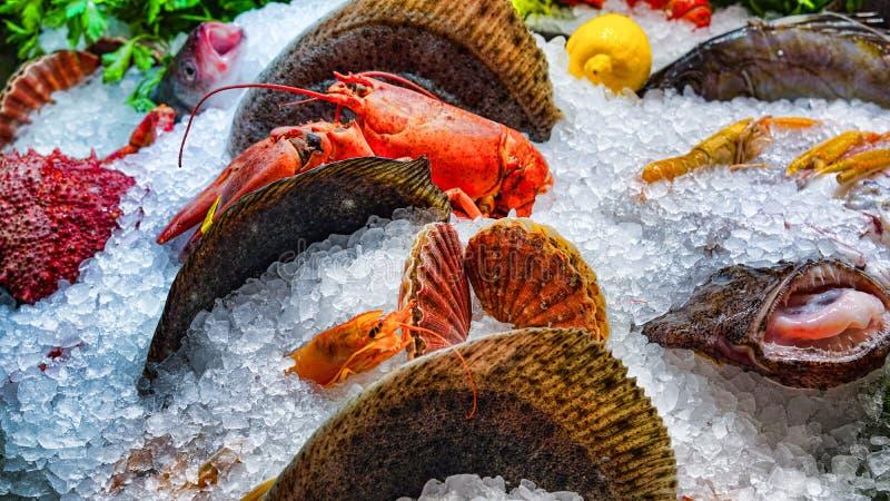 Diversos pescados frescos en el hielo en un supermercado Pescados frescos en una tienda de los pescados foto de archivo