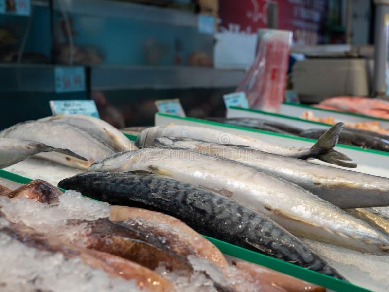 Diversos pescados que se sientan en el hielo en la sección de los mariscos del colmado para la compra imagen de archivo