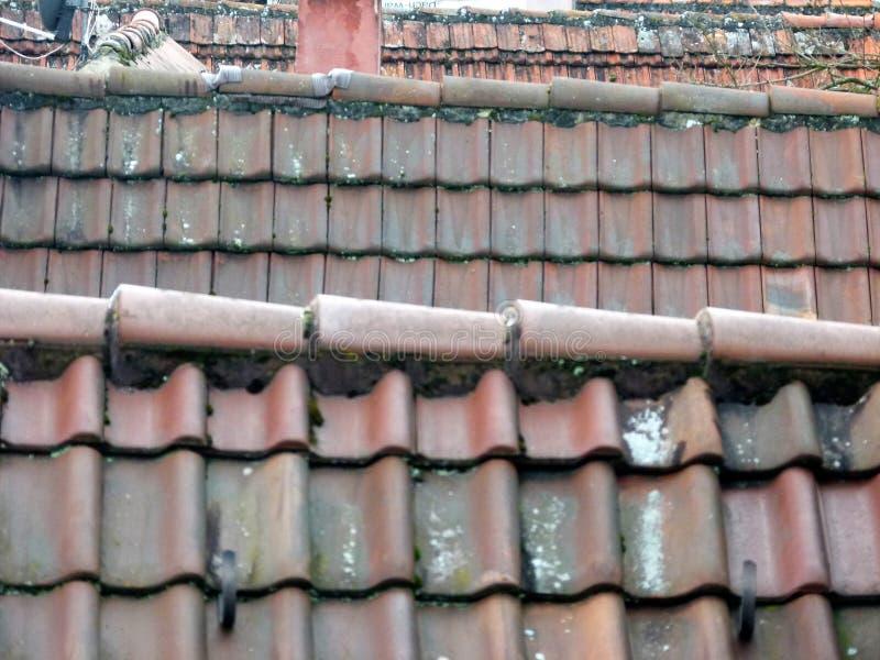 Diversos telharam telhados na tele-perspectiva foto de stock royalty free