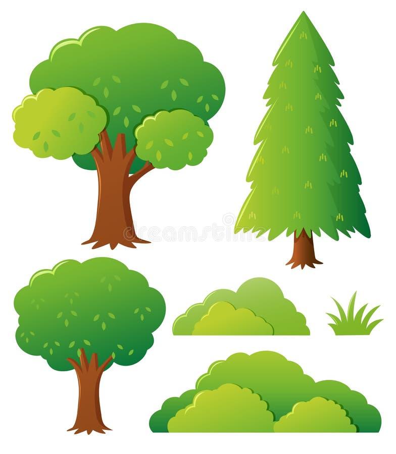 Diversos tipos de árbol ilustración del vector