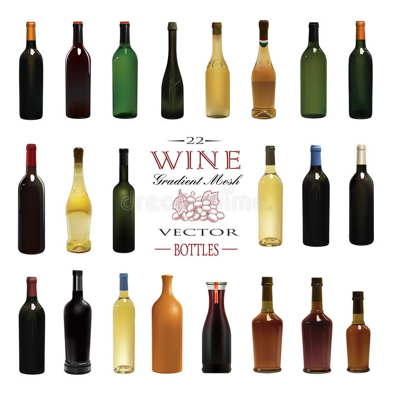 Diversos tipos de botellas de vino Ilustración del vector ilustración del vector