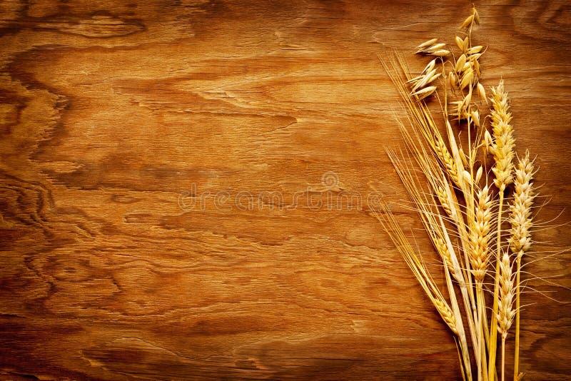 Diversos tipos de cereales exhibidos en fondo de madera del vintage imágenes de archivo libres de regalías