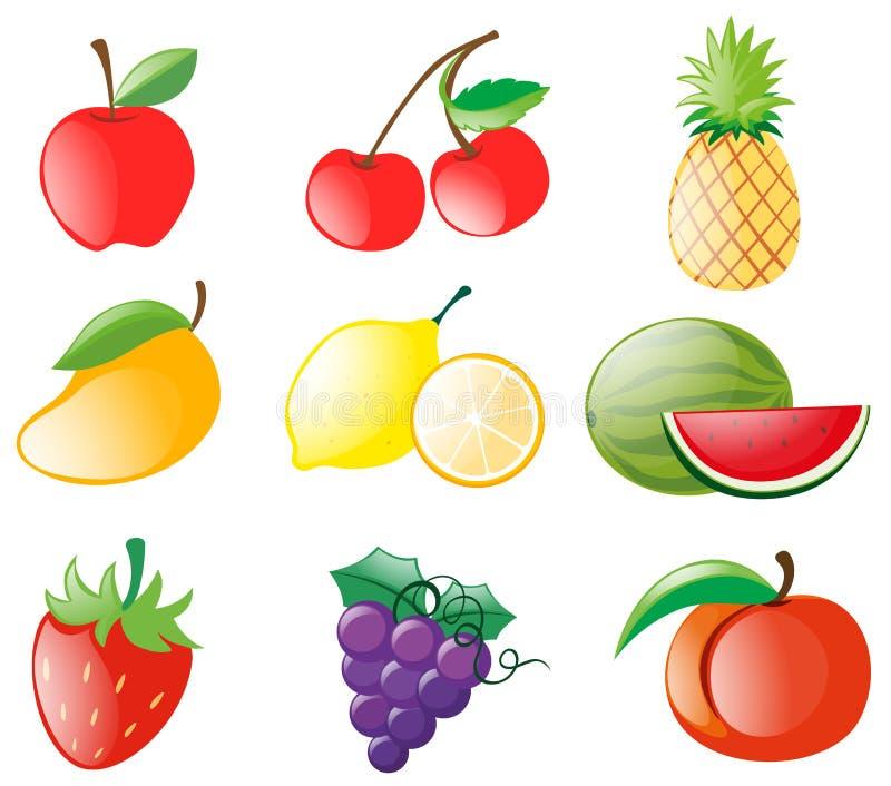 Diversos tipos de frutas stock de ilustración