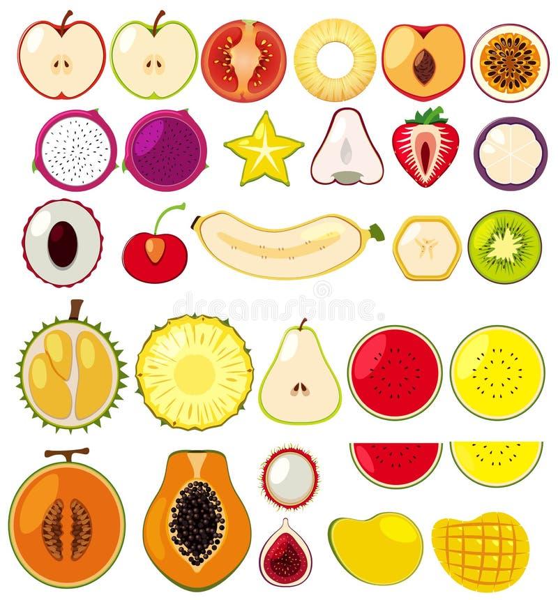 Diversos tipos de frutas cortadas por la mitad stock de ilustración